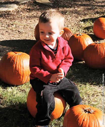 gavin-pumpkins.jpg